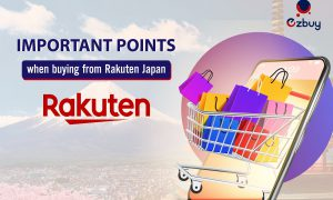 Important points when buying from Rakuten Japan
