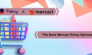 The Best Mercari Proxy Service